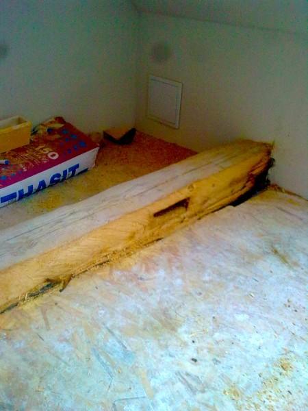 Obložení starého trámu: img00050-jpg